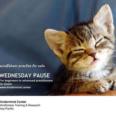 Mindfulness Meditation Wednesday Pause - Ho Chi Minh