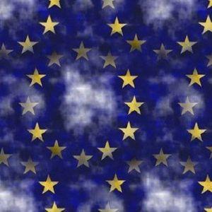 Webinarserie Europees Recht