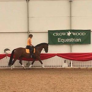 Dressage training at Crow Wood Equestrian