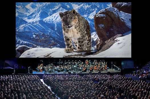 Planet Earth II Live in Concert London