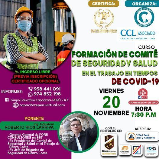 Curso Gratuito: Formación De Comité SST -Ley n° 29783, 21 January | Event in Lince | AllEvents.in