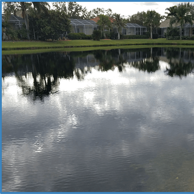 Stormwater Pond Management from Algae to Birds (webinar)