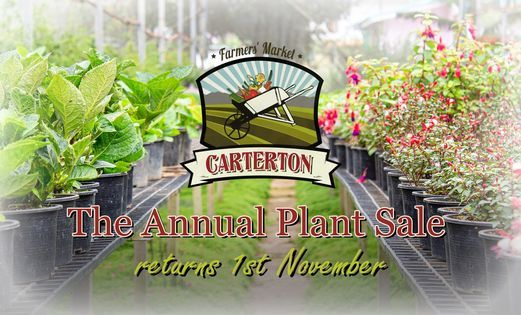 The Annual Plant Sale 2020, 1 November | Event in Masterton | AllEvents.in