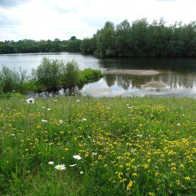 Explore Bodenham Lake Nature Reserve