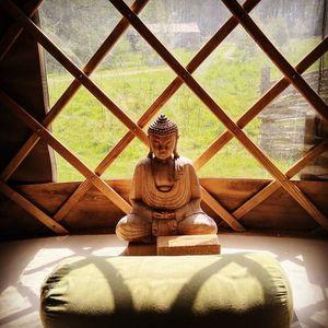 Autumn Recharge & Replenish Yin Yoga (YOGA GARDEN)