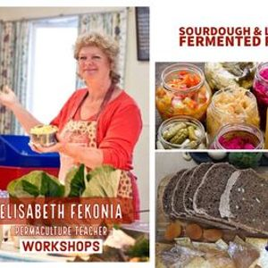 Townsville - New Cheese Sourdough & Fermented Foods