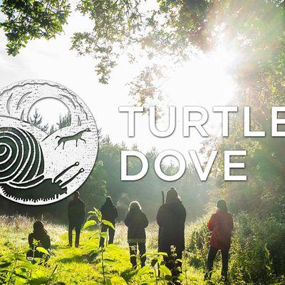 Turtle Dove Pilgrimage