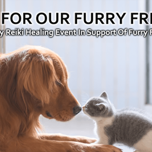 Reiki For Our Furry Friends