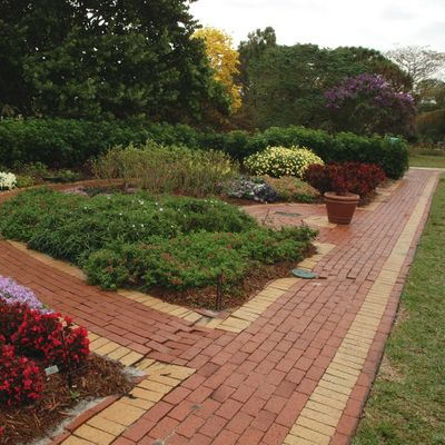 Ltd. Commercial & Ltd. Lawn-Ornamental CEU Review (WEBINAR)