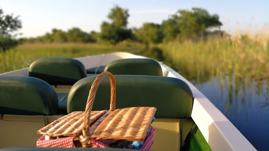 Breakfast On Boat - 4h Shared Slow Trip in Danube Delta - 2020
