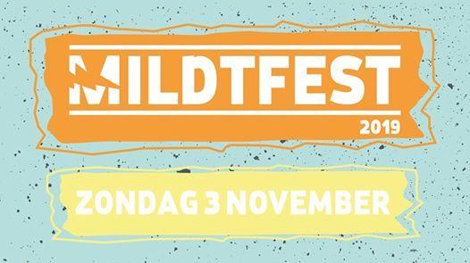 Mildtfest 2019  Dynamo