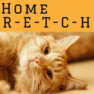 Home S-T-R-E-T-C-H with Networks