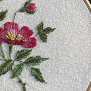 Hand Embroidery Wild Rose. A thread painting workshop