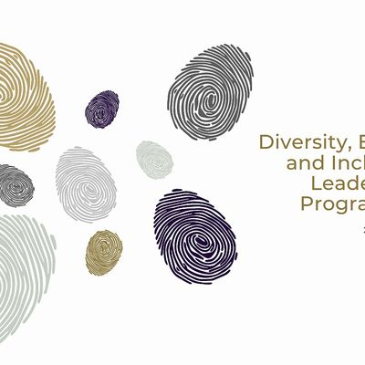 Diversity Equity and Inclusion Leadership Programme  international cohort