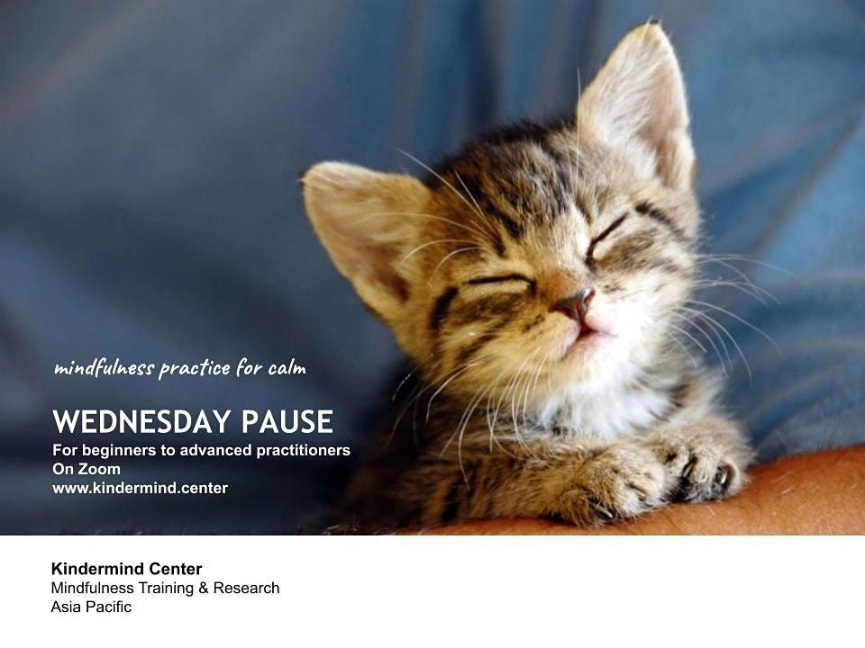 Mindfulness Meditation: Wednesday Pause - Ho Chi Minh | Event in Ho Chi Minh City | AllEvents.in