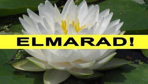 Natura Nap ELMARAD