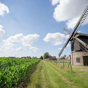 Bezoek Preetjes molen