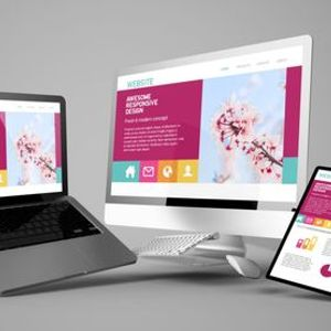 Complete Website Design Mastery Online Course (Instant Life time Access)