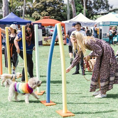 Pawsitive Steps - Mind Doggy and Spirit Festival