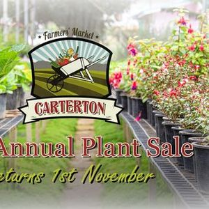 The Annual Plant Sale 2020