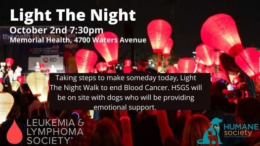 LLS Light The Night with HSGS, 2 October   Event in Savannah   AllEvents.in