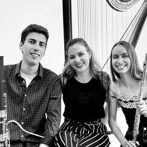 Mladi virtuozi - 8. koncert