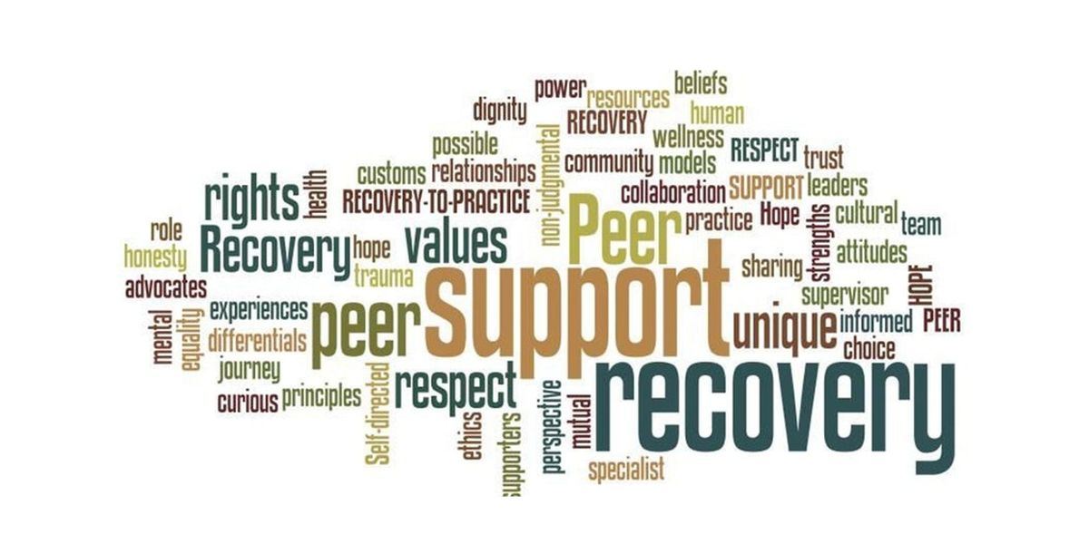 PEER Voices Educational Series 3 Recovery Planning & Resource Building