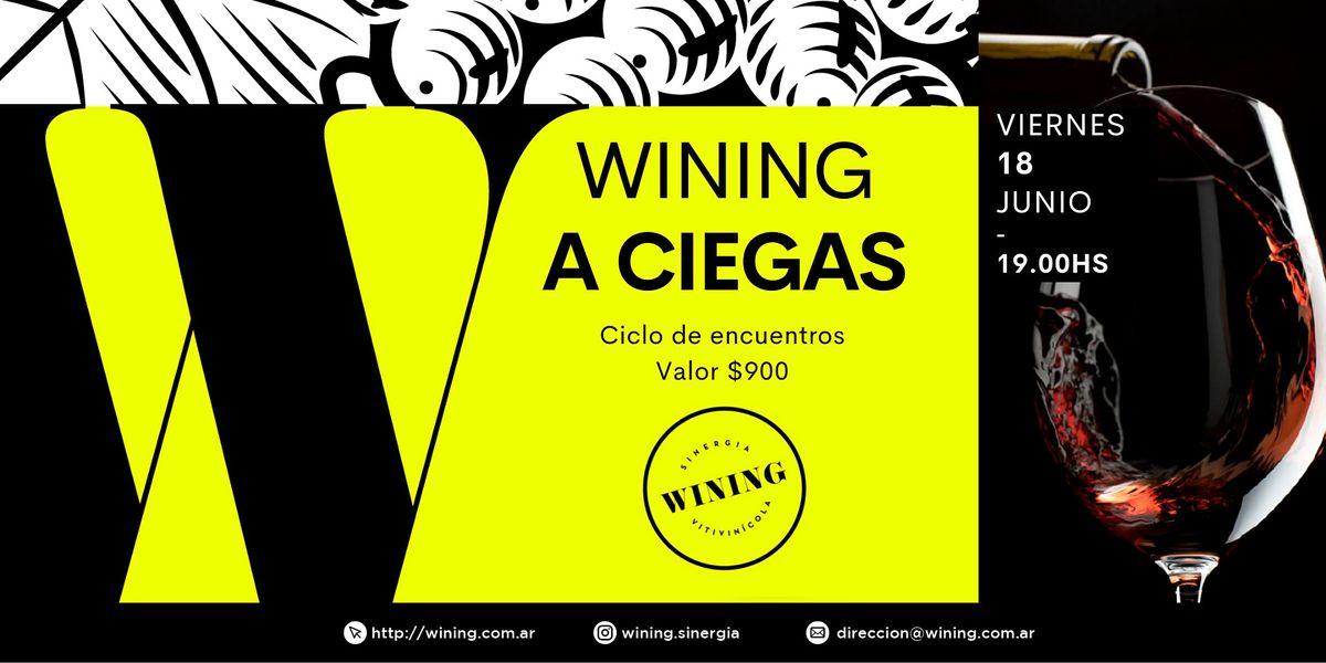 WINING A CIEGAS, 18 June | Event in Villa Crespo | AllEvents.in