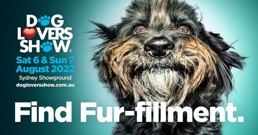 Dog Lovers Show - Sydney 2022, 6 August | Event in Marrickville | AllEvents.in