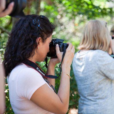 Beginner DSLR Photography Workshop