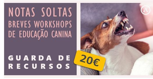 GUARDA DE RECURSOS (POSSESSIVIDADE), 8 May | Event in Lisbon | AllEvents.in