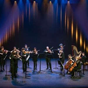 Ataneres Ensemble Strings in the house