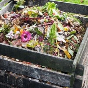 Intro to Composting for Rhode Islanders