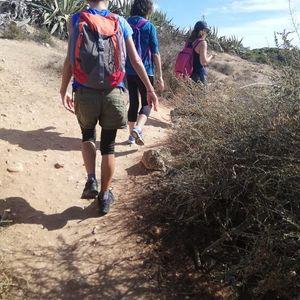 Caminata consciente y meditacin en los pinares de La Puebla