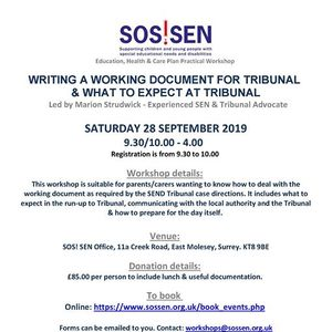 Workshop - Writing a working document for tribunal