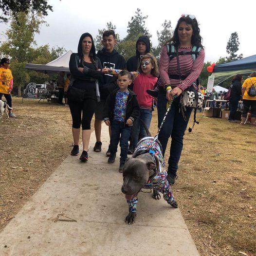 Fresno Ca Halloween Events 2020 Best Halloween Events & Parties In Fresno 2020 | AllEvents.in