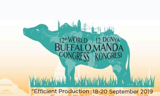 World Buffalo Congress 2019