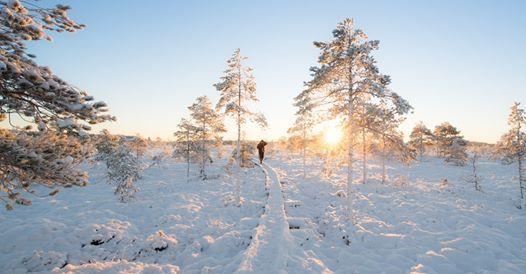 Talviretkeilyn alkeet maastossa  Espoo
