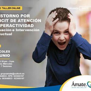 Curso OnlineTrastorno por Dficit de Atencin e Hiperactividad-Evaluacin e Intervencin conductual