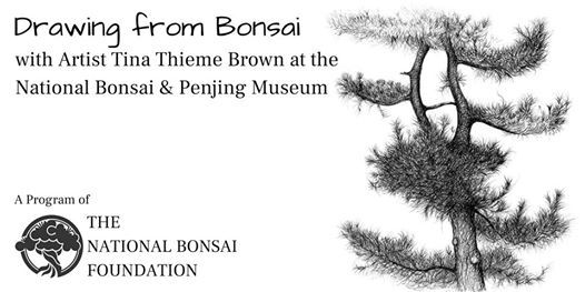 Shree Bonsai Hyderabad events in the City  Top Upcoming
