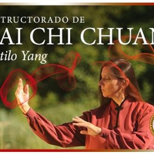 Instructorado y Profesorado de Taichichuan y Chi kung