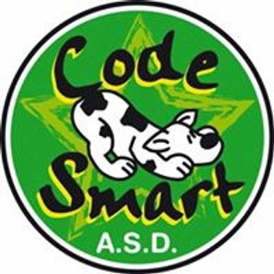 Code Smart Asd